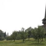 Conservare - restaurare și punere în valoare a bisericilor din lemn Petrindu și Cizer